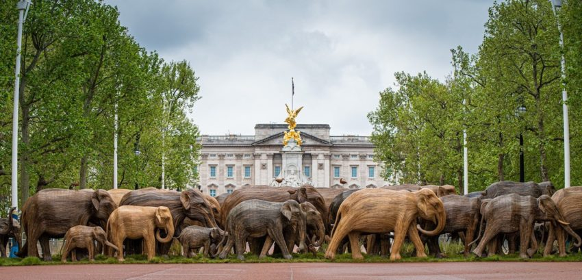 A herd of large, sculpted elephants stands in front of an official building in London, UK.
